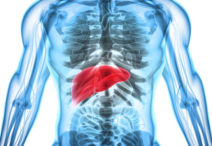 Four Causes of Thyroid Damage You Might've Missed - Liver