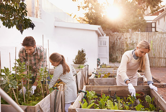 Grow a Garden to Guard Your Brain Function